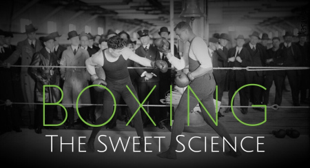 boxing-sweet-science-2